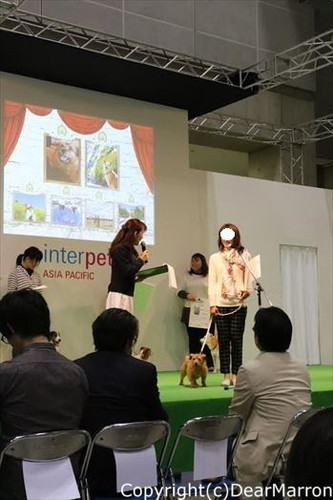 授賞式mikaサンコメント_R.jpg